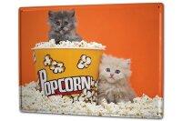 Tin Sign XXL Anniversary Party Fun Puppy Kitten Popcorn