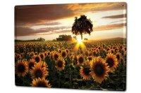 Tin Sign XXL Kitchen Sunflower field sunset