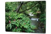 Tin Sign XXL Kitchen river Plants Trees