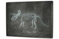 Tin Sign XXL Dinosaur Dino skeleton