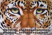 Perpetual Calendar rative Vet Practice Warminski tiger...