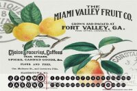 Perpetual Calendar Kitchen Fruits Miami Tin Metal Magnetic
