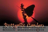 Perpetual Calendar Butterfly Species G. Huber Butterfly...