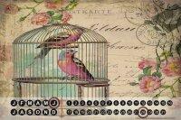 Perpetual Calendar rative Vet Practice Bird cage Tin...