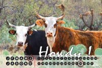 Perpetual Calendar rative Vet Practice G. Huber Howdy!...