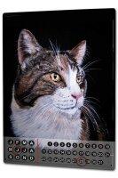 Perpetual Calendar Cat Krakowski Portrait mane Tin Metal...