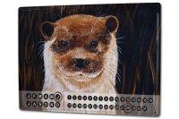 Perpetual Calendar rative Vet Practice Krakowski Otters...