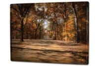 Tin Sign XXL Retro Autumn Park