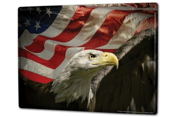 Tin Sign XXL Globetrotter Eagle United States