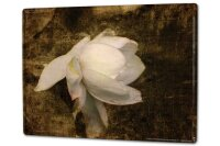 Tin Sign XXL Flora Floral Flower