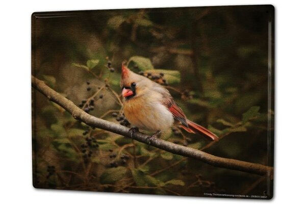 Tin Sign XXL Bird Bird