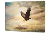 Tin Sign XXL Bird Species Eagle
