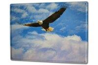 Tin Sign XXL Ravtive Vet Practice Eagle