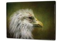 Tin Sign XXL Bird Eagle