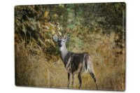 Tin Sign XXL Ravtive Vet Practice Deer