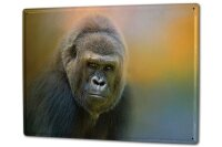 Tin Sign XXL Ravtive Vet Practice Monkey Gorilla