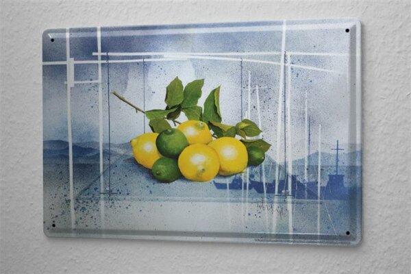 Franz Heigl Blechschild Welt Reise Gemälde Stillleben Zitrusfrucht Wand Deko Schild 20X30 cm