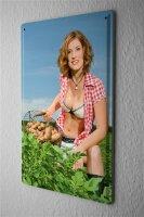 Blechschild Pin Up Erotik Deko Kartoffelernte BH Metall Wand Schild 20X30 cm