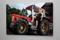 Blechschild Pin Up Erotik Deko Abendkleid Traktor Metall...