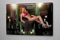 Blechschild Pin Up Erotik Deko Dessous Traktor Metall...