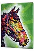 Tin Sign XXL Ravtive Vet Practice Colorful horse