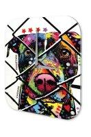 Wall Clock Animal Shelter Adoption Printed Acryl Acrylglass