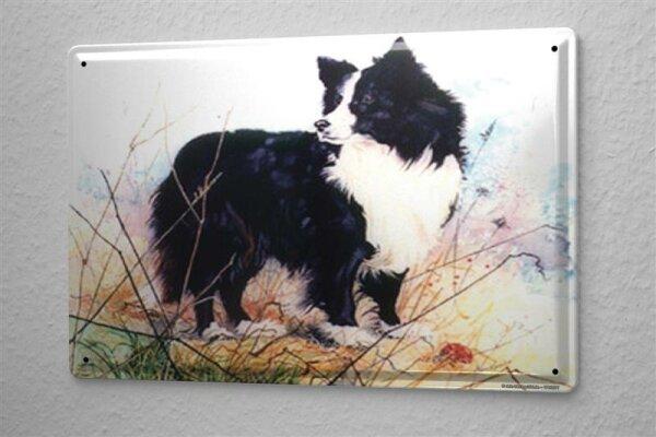 H. L. Koehler Blechschild Hunde Deko Border Collie Metall Deko Wand Schild 20X30 cm