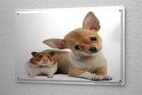Tin Sign Nursery Decoration Chihuahua puppy Hamster Metal...