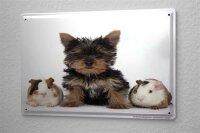 Blechschild Deko Kinderzimmer kleiner Hund Welpe Hamster...