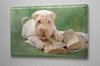 Blechschild Hunde Rasse Welpe Shar-Pei Buch Metallschild 20X30 cm