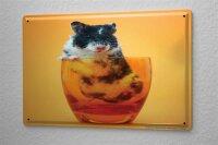 Blechschild Fun Wanddeko Hamster Glas Metallschild 20X30 cm