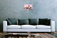 Blechschild Küchen Deko Bulldogge Hamster auf Kopf Metall Wand Schild 20X30 cm