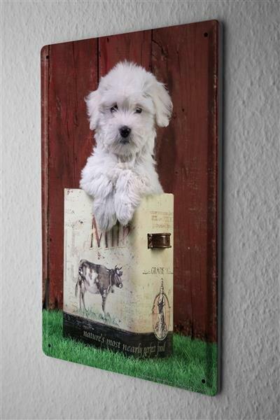 Blechschild Hunde Rasse Hundewelpe Milchkarton Metallschild 20X30 cm