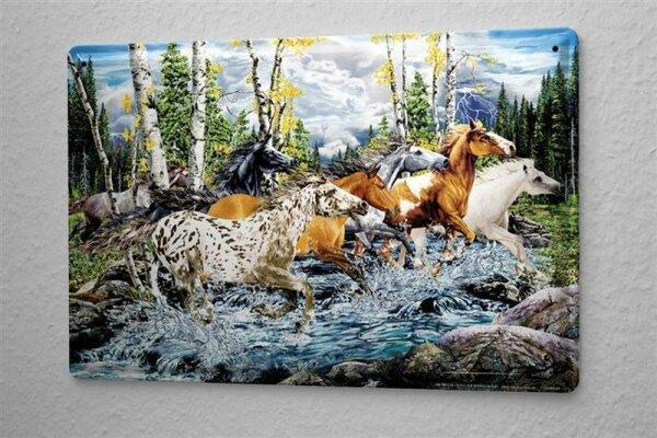 Blechschild Fantasy Gothik Pferde  Wand Deko Schild 20X30 cm