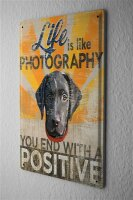Blechschild Nostalgie Motiv Life is like Photography Hundekopf