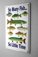 Blechschild Retro So many fish so little time