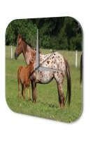 Wall Clock Nursery Decoration Mother foal coupling...