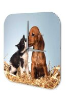 Fun Wall Clock Vintage Decoration Dog and cat puppy straw...