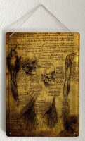 Tin Sign XXL  Anatomy Science  human body Medical Doctor...