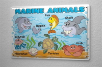 Tin Sign marine animals in English fish dolphin shark...