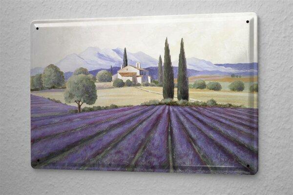 Blechschild Galerie Maler Franz Heigl Bild Toskana Zypressen Feld lila blau Haus 20x30 cm