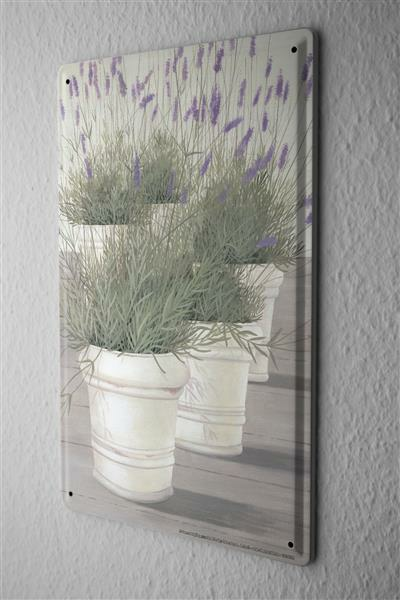 Tin Sign Gallery painter Franz Heigl Picture Still life lavender flower pot white