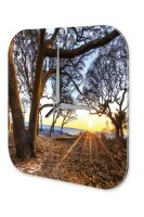 Wall Clock Feng Shui Picture Trees sea sun rays...