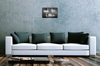 Blechschild Dave Butcher schwarz weiß Foto Nacht Sydney Opernhaus Palmen 20x30 cm